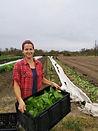 cassie lettuce.jpg
