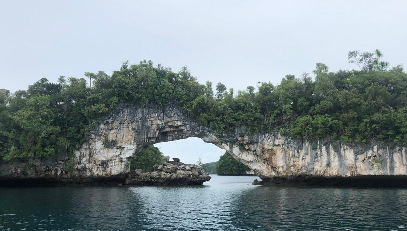 Palau Seascape