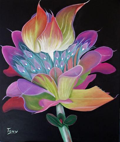 Flower of the Moment 10.jpg