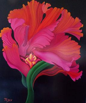 Red Flower (3).jpg