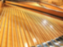 Piano tuner| Piano Tuning| Piano Repair| Piano tuner in Ann Arbor| Novi| Ypsilanti| Milan| Dexter| Brighton| Canton| Commerce| West Bloomfield| Farmington Hills| Royal Oak| Troy| Metro Detroit| RPT| Registered Piano Technician| Japanese