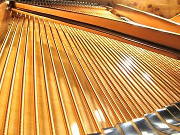 Piano tuner| Piano Tuning| Piano Repair| Piano tuner in Ann Arbor| Novi| Ypsilanti| Milan| Dexter| Brighton| Canton| Commerce| West Bloomfield| Farmington Hills| Royal Oak| Troy| Metro Detroit| RPT| Registered Piano Technician| Japanese
