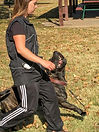 IPO Obedience Training Wichita, Schutzhund Obedience Training Wichita, Schutzhund Training Wichita, IPO Training Wichita, Schutzhund Training Wichita KS, IPO Training Wichita, KS