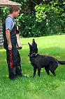 Schutzhund Protection Dog Training, IPO Protection Dog Training, Bark and Hold Training, IPO Training Wichita, Schutzhund Training Wichita, Bite Work Training Wichita KS