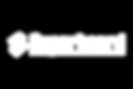 logo superboard.png