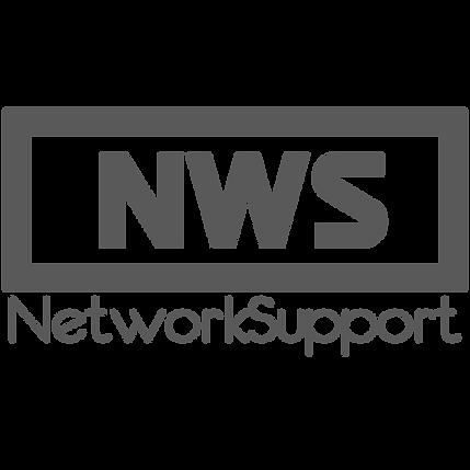 株式会社ネットワークサポートLOGO