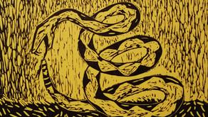 Editorial. Sueño con serpientes: la ofensiva libertariana