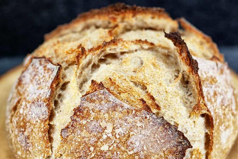 1 - Bread Selection