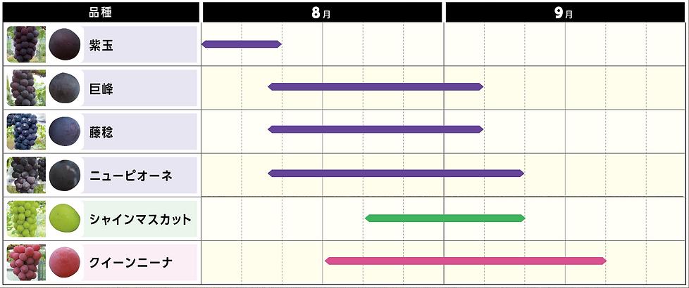 収穫カレンダー2021.png