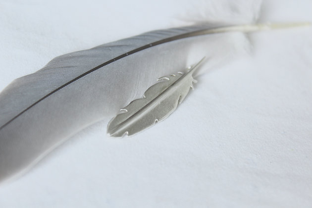 Sterling silver feather