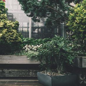 """Symbolism of """"A Garden"""""""