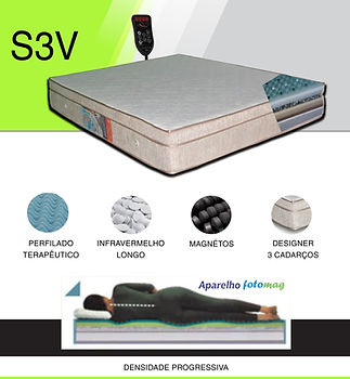 S3V-min.jpg