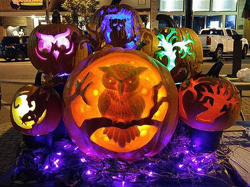 Lighted Pumpkin Display