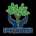 РУСКОМ логотип цветной_edited.png