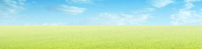 трава и небо.jpg