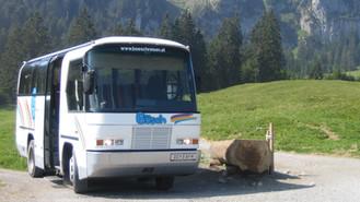 Wanderbus 024.jpg