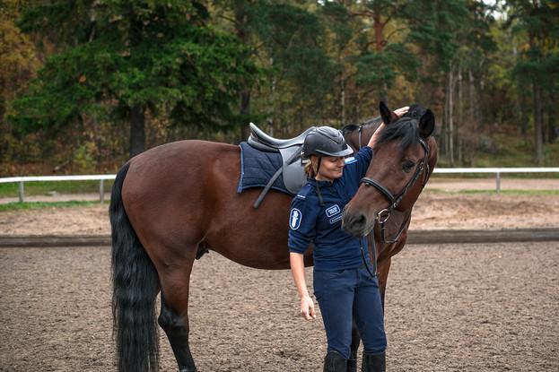 Työsuhteessa, työparina poliisi ja hevonen. / H2 -lehti