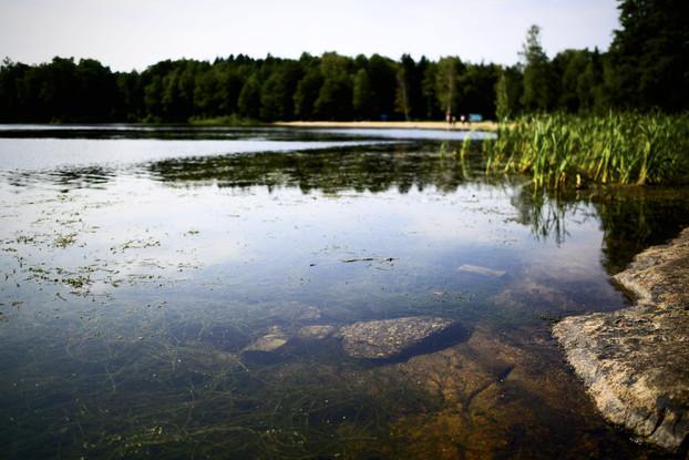 Kemikaalein kirkastettu Littoistenjärvi muutama vuosi kirkastamisen jälkeen / Lehtikuva