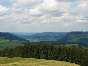 Faltenmolasse, Sonneck, Allgäu