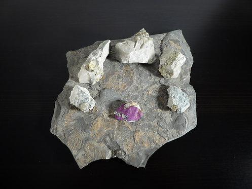 Purpurit und Pyrit