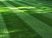 yard-mowing-designs-property-maintenance
