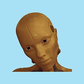 Synbody-Brown.jpg