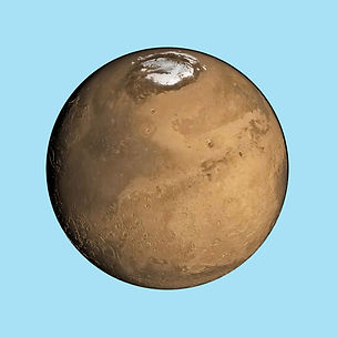 MarsNet.jpg