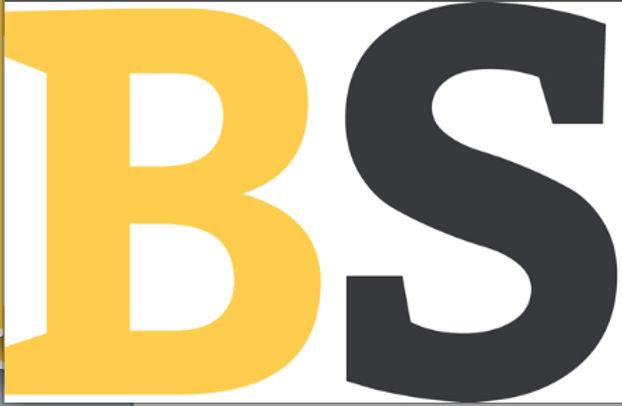 BS Conseil et Communication