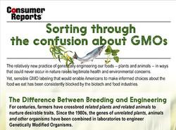 GMOs_thumb