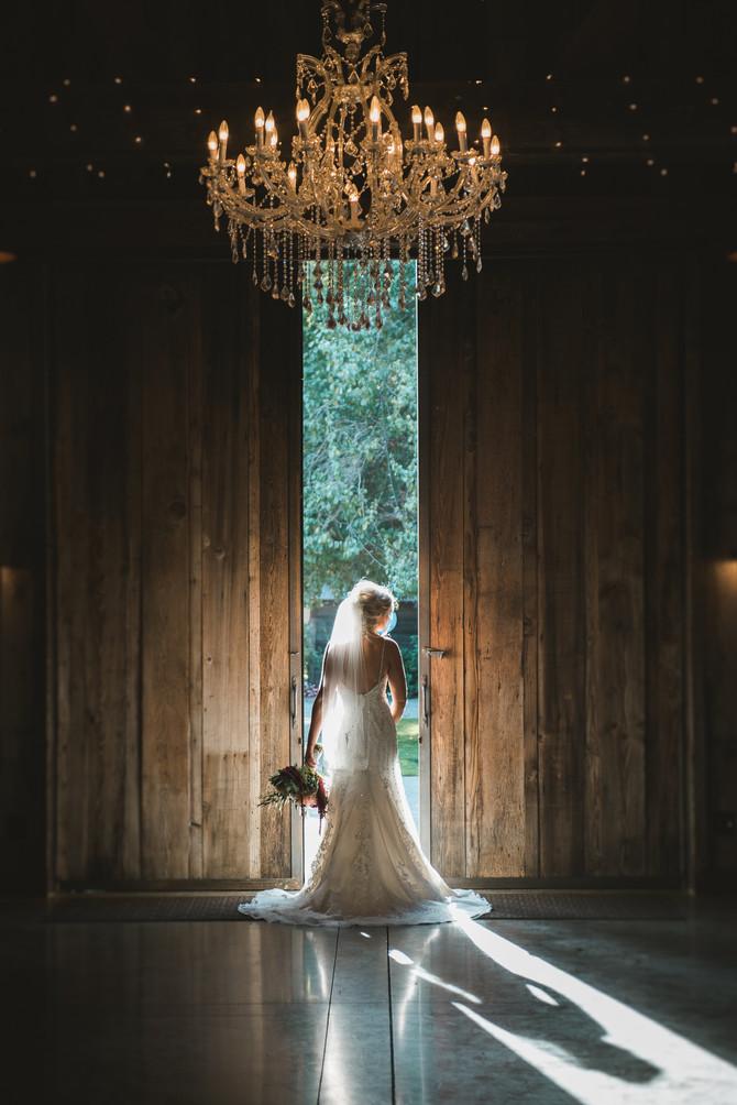 Teddy & Alli || Wedding