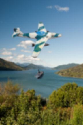 Unknown Jet Over Tennyson Inlet.jpg