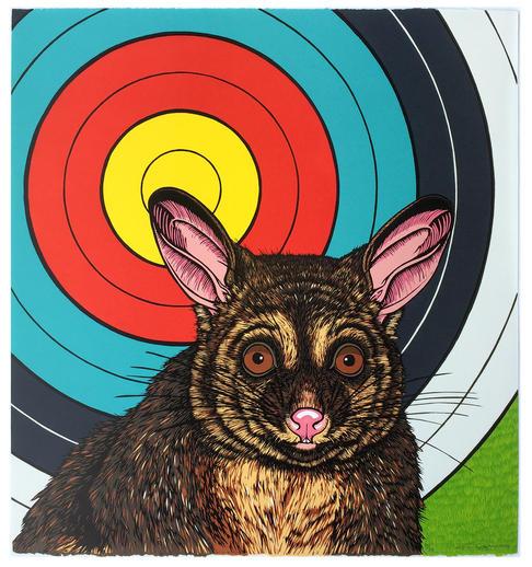 Target - Brushtailed Possum