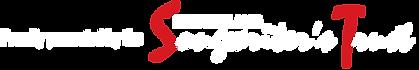 NZST-web-logo.png