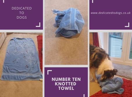 Enrichment Guide.......Number Ten