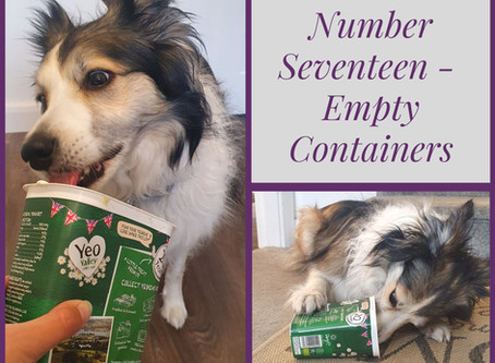 Enrichment Guide.....Number Seventeen