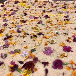 Botanical Biscuits : Earl grey infused -