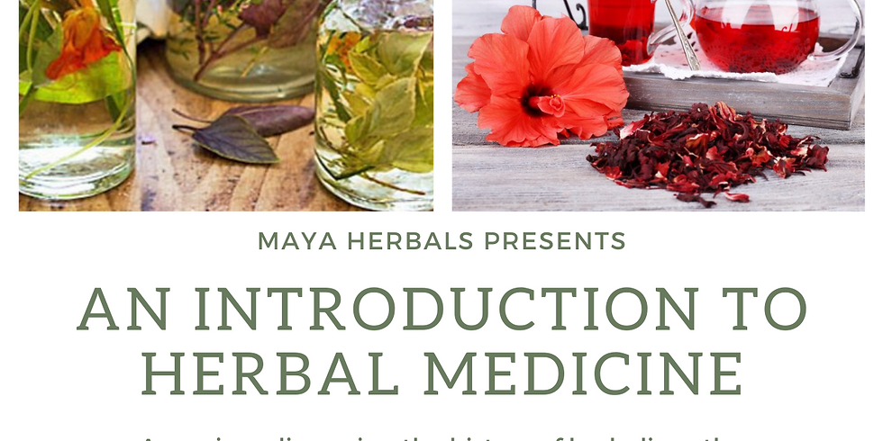 An Introduction to Herbal Medicine