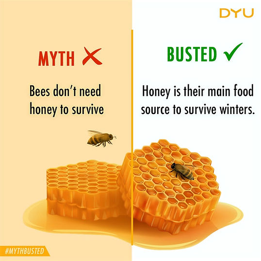 Bee Food, Natural Honey, Pure Honey, DYU Pure Artisanal honey, DYU Pure Raw honey, Western ghats honey, Apis Cerana Honey, Indian Native Honey bee honey