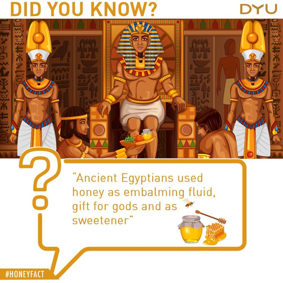 Egyptian Story
