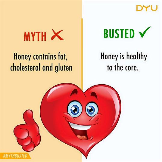 is honey is fattening and unhealthy, Natural Honey, Pure Honey, DYU Pure Artisanal honey, DYU Pure Raw honey, Western ghats honey, Apis Cerana Honey, Indian Native Honey bee honey