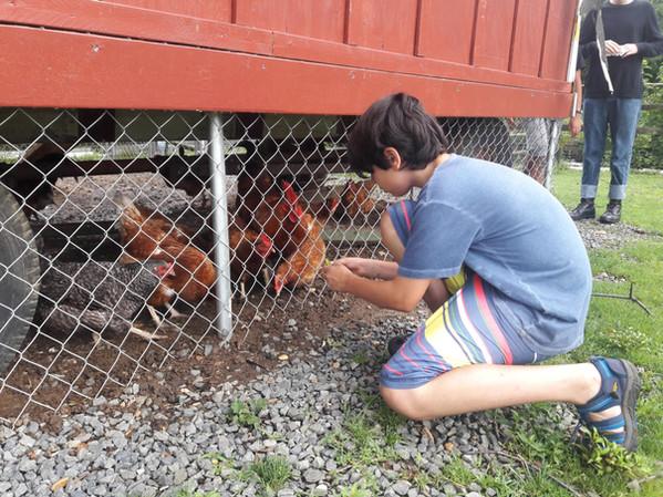 At the MANJ farm