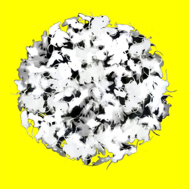 Negative Baby Rat Sphere on Yellow #58
