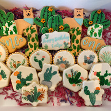 Cactus/Succulent Themed Cookies