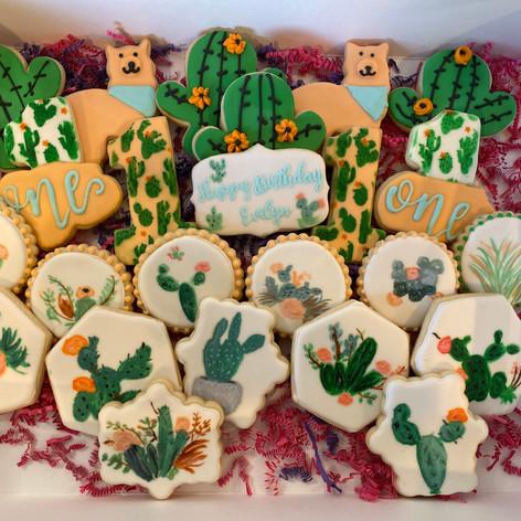 Cactus/Succulent Themed Cookies