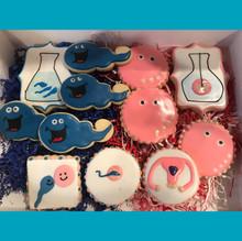IVF Cookies