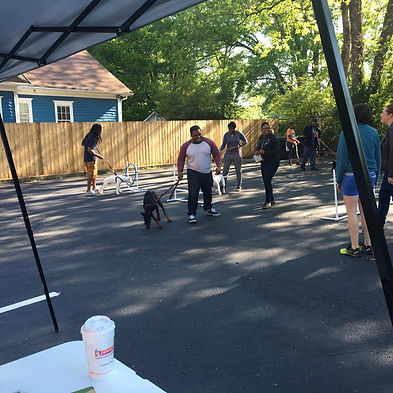 Free Community Dog Training Atlanta