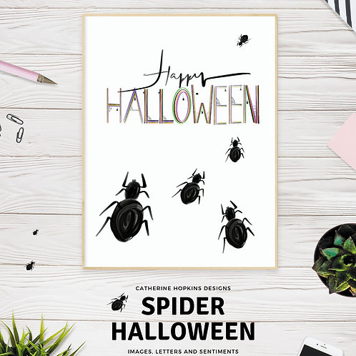 Spider Letters, images and sentiments
