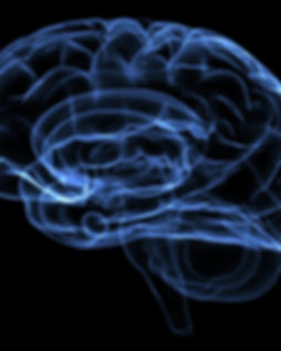 984826-brain.jpg