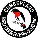 CBOC Logo - jpg.jpg