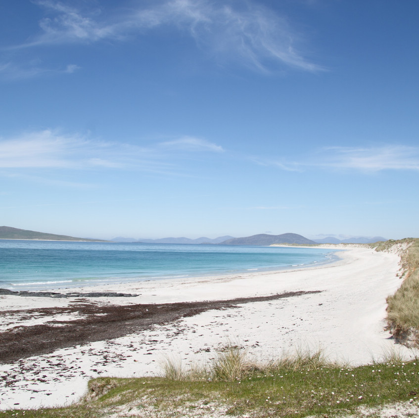 View back to Harris